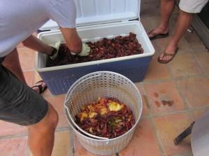 Add Crawfish to Basket